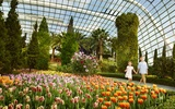 Thumbnail: Gardens by the Bay